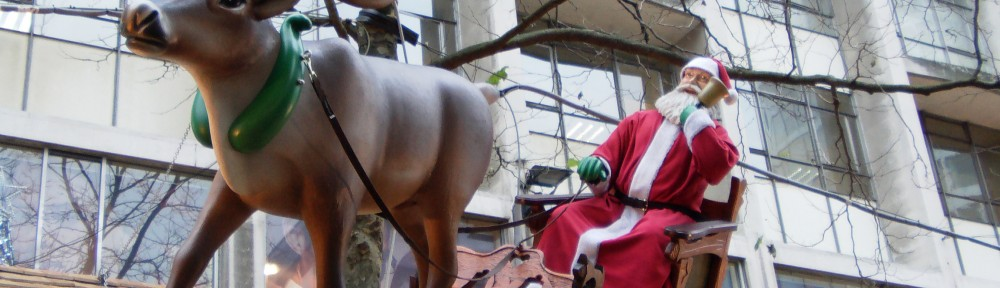 Birmingham Christmas Market 2012 (95)