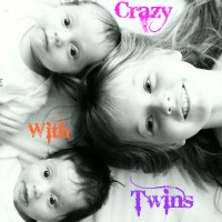 Crazy With Twins Blog Badge