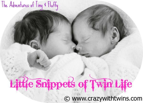 Little Snippets of Twin Life