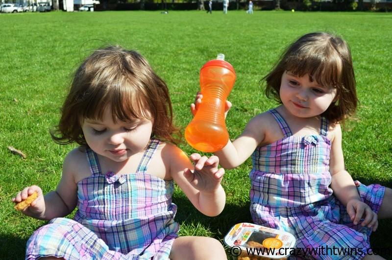 Twins having a picnic