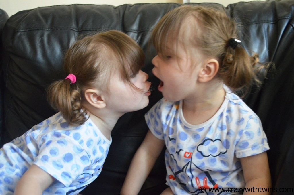 The twins at 23 months (smaller file)