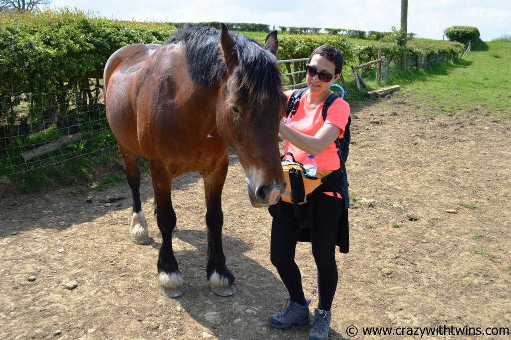 Day 2 - Stanton to Cleeve Hill (11)