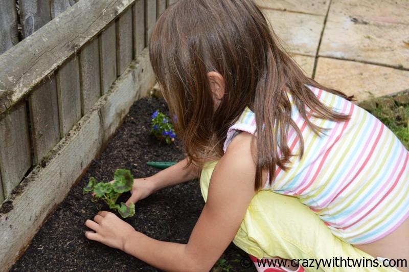 Plant Me Now (4)