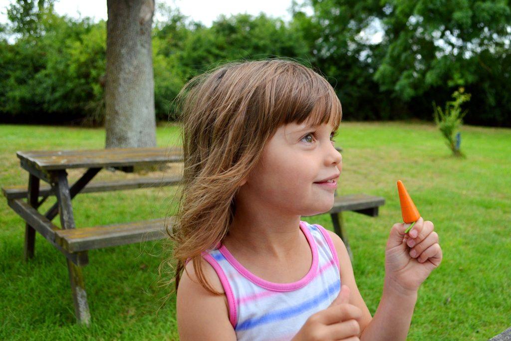 orange tree toys, wooden toys, wooden playset,
