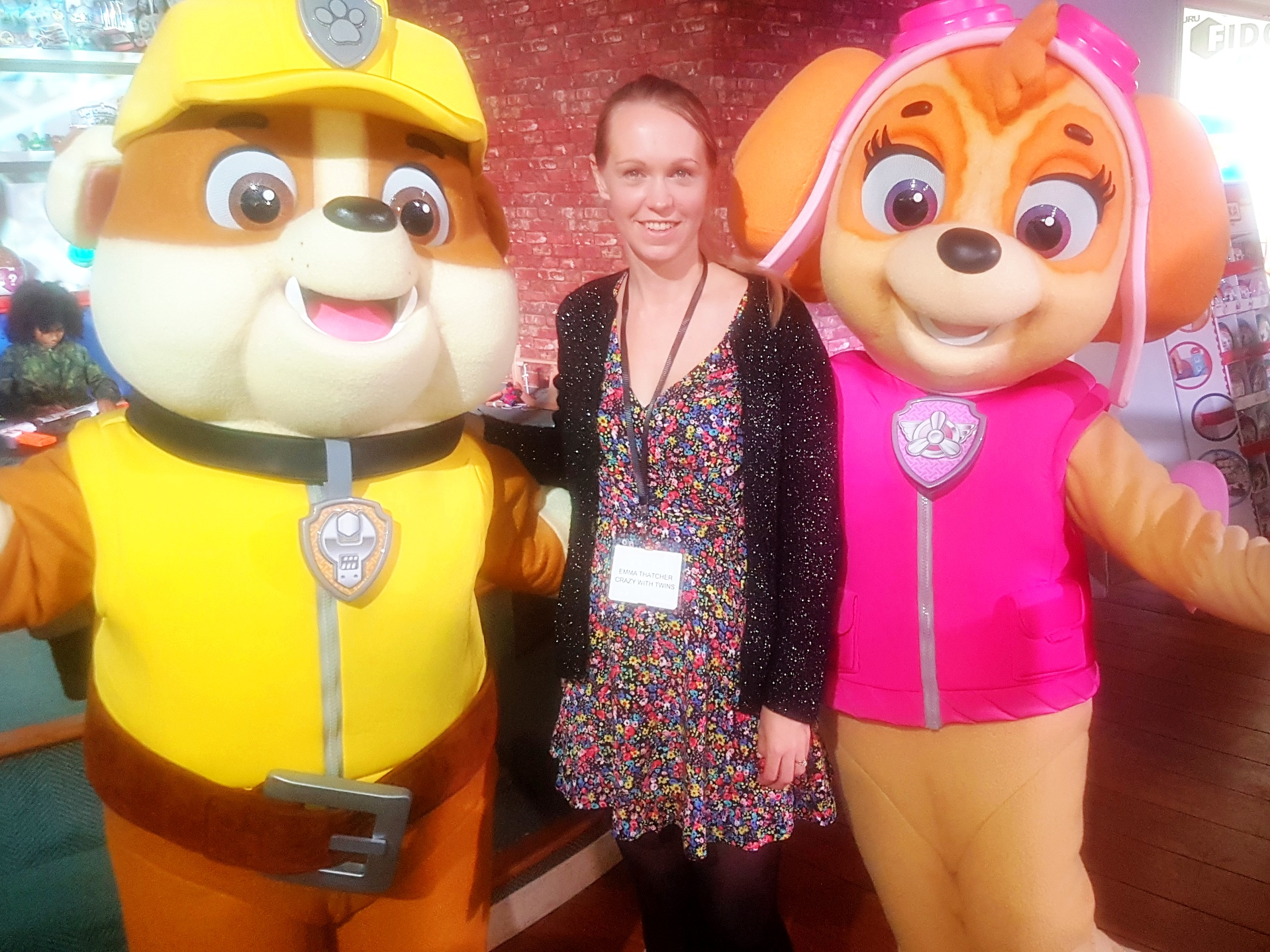 Rubble and Skye, Paw Patrol, Dream Toys