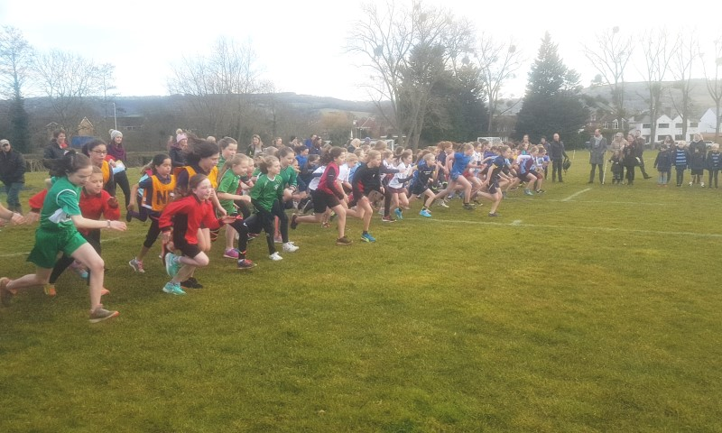 cross country race, primary cross country, school cross country
