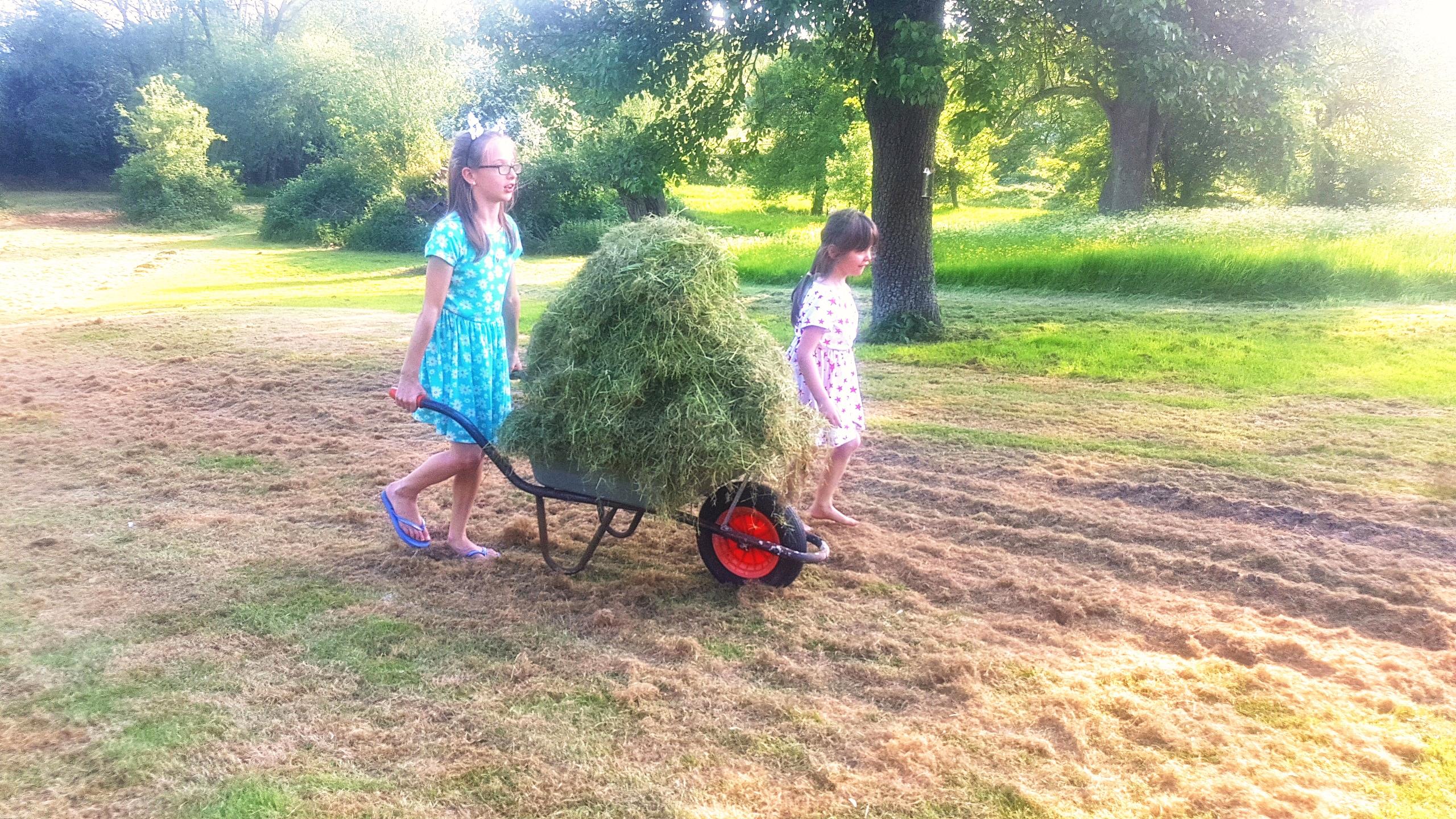 Kids gardening, 24 degrees of housework, gardening