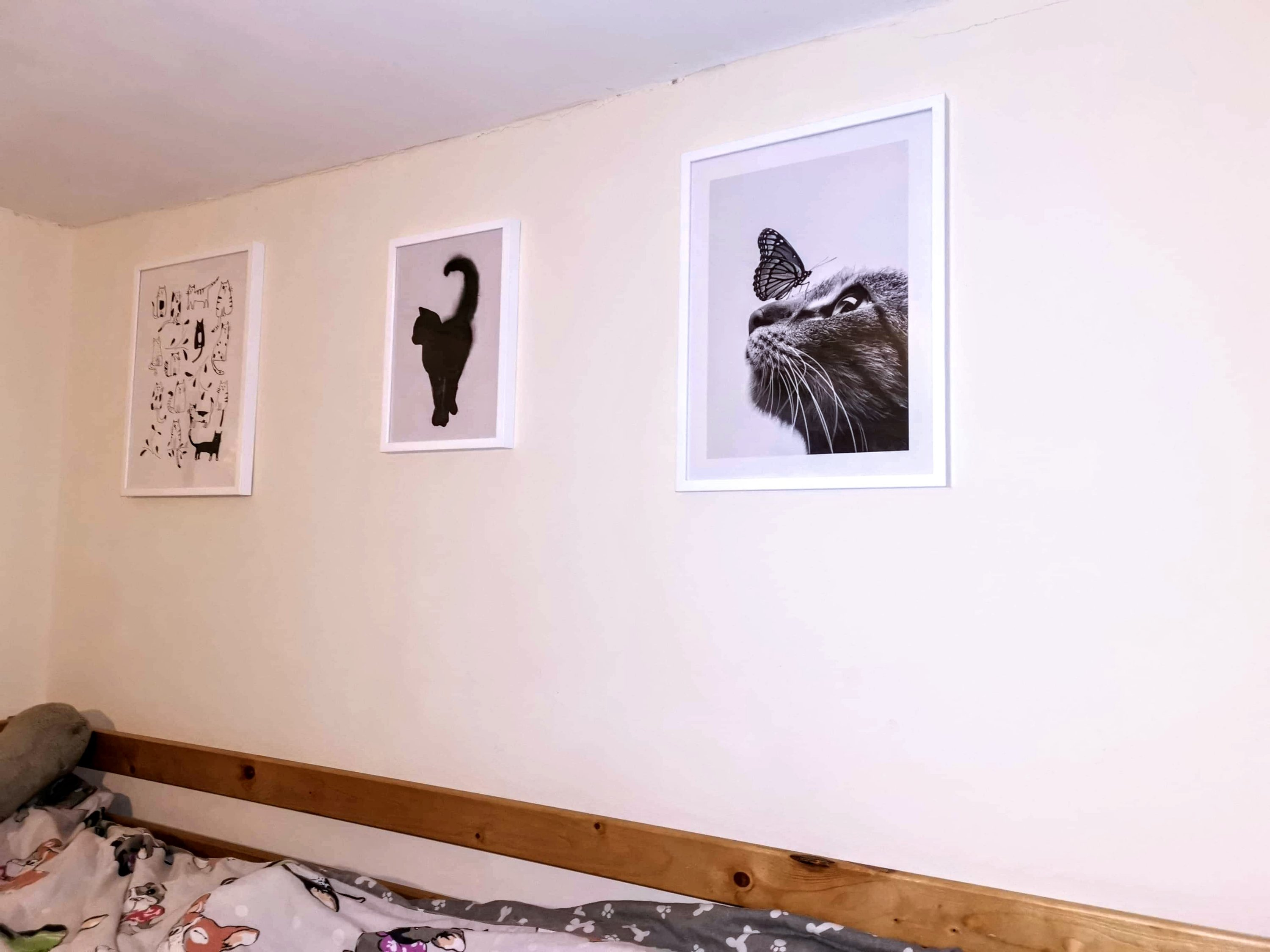 Framed cat prints on the wall, by Desenio